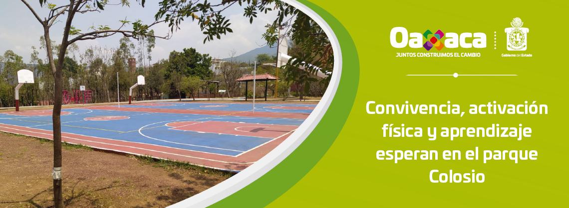 Convivencia, activación física y aprendizaje   esperan en el parque Colosio