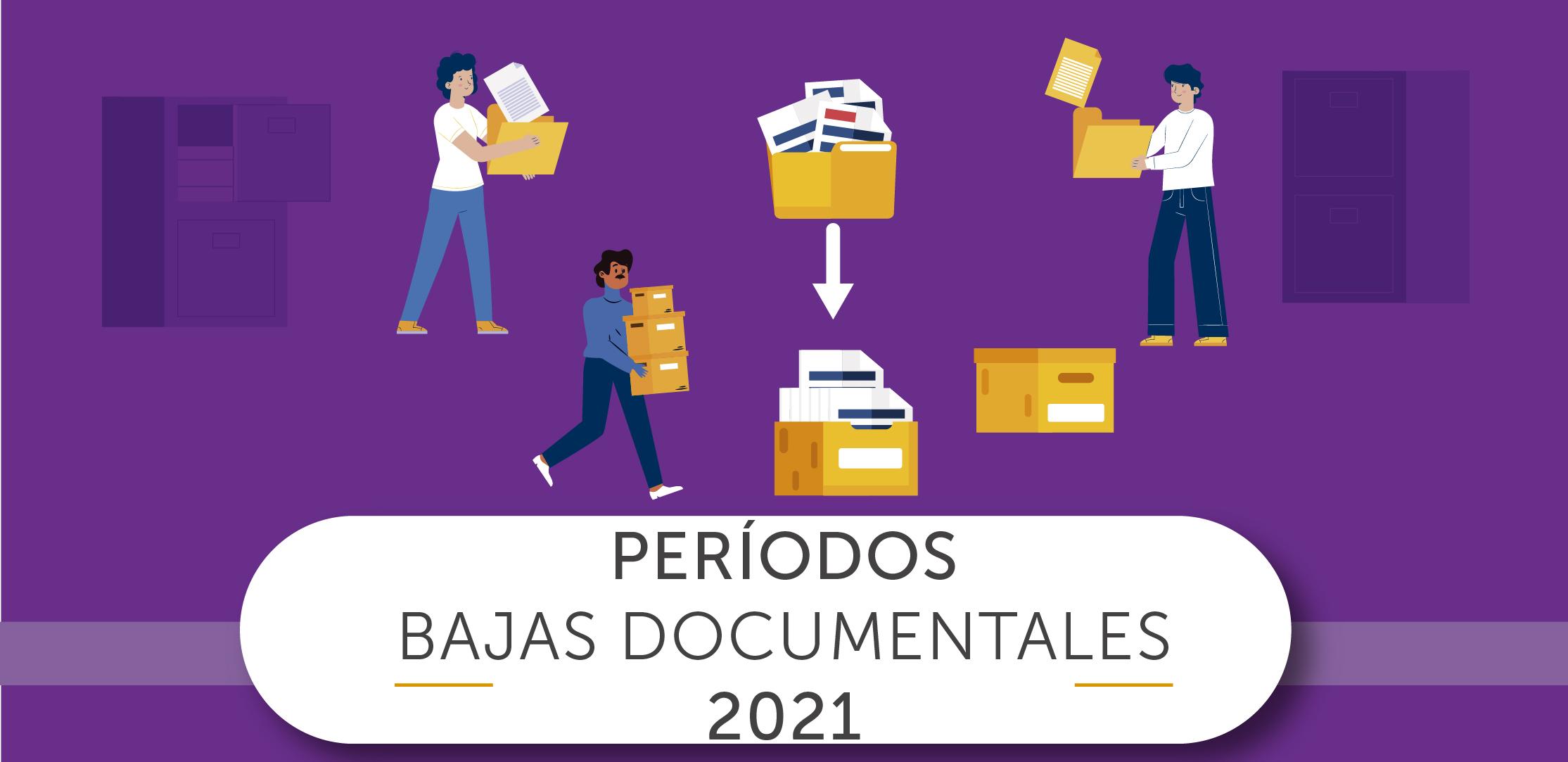Bajas Documentales
