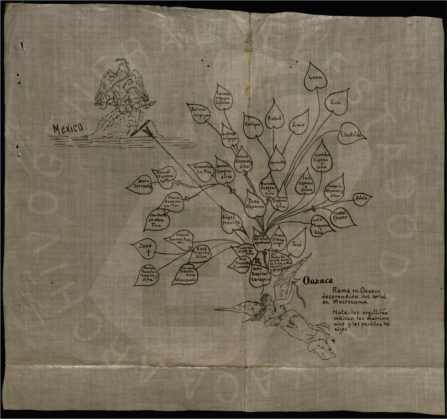Genealogía y árbol de Moctezuma.