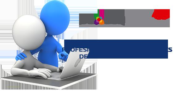 PROGRAMA DE ACTUALIZACIÓN PROFESIONAL PARA INTEGRANTES DE LOS CÓMITES DE CAO