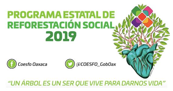 Programa estatal de reforestación social 2019