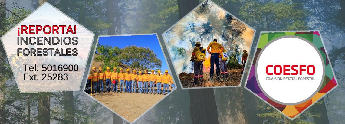 Reporta Incendios Forestales