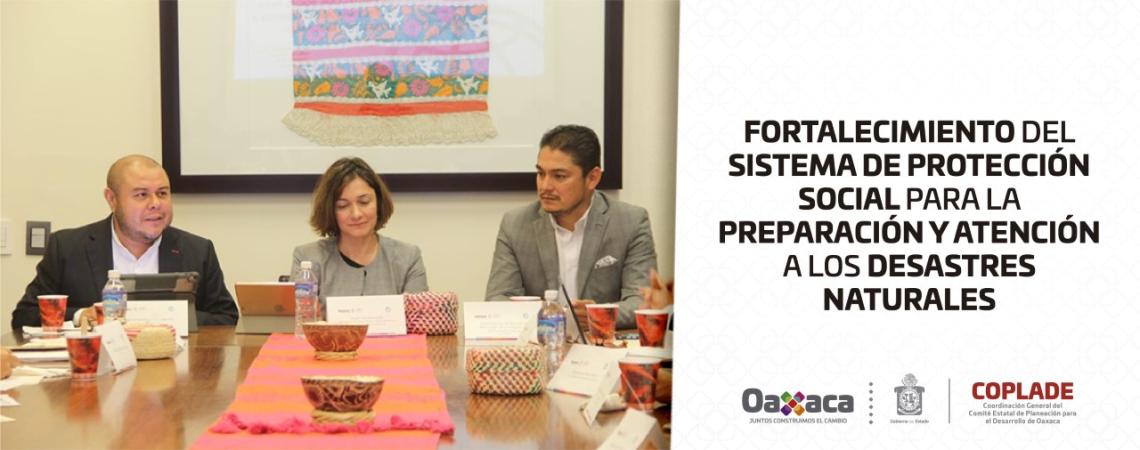 Fortalecimiento del Sistema de Protección Social para la Preparación y Atención a Desastres Naturales