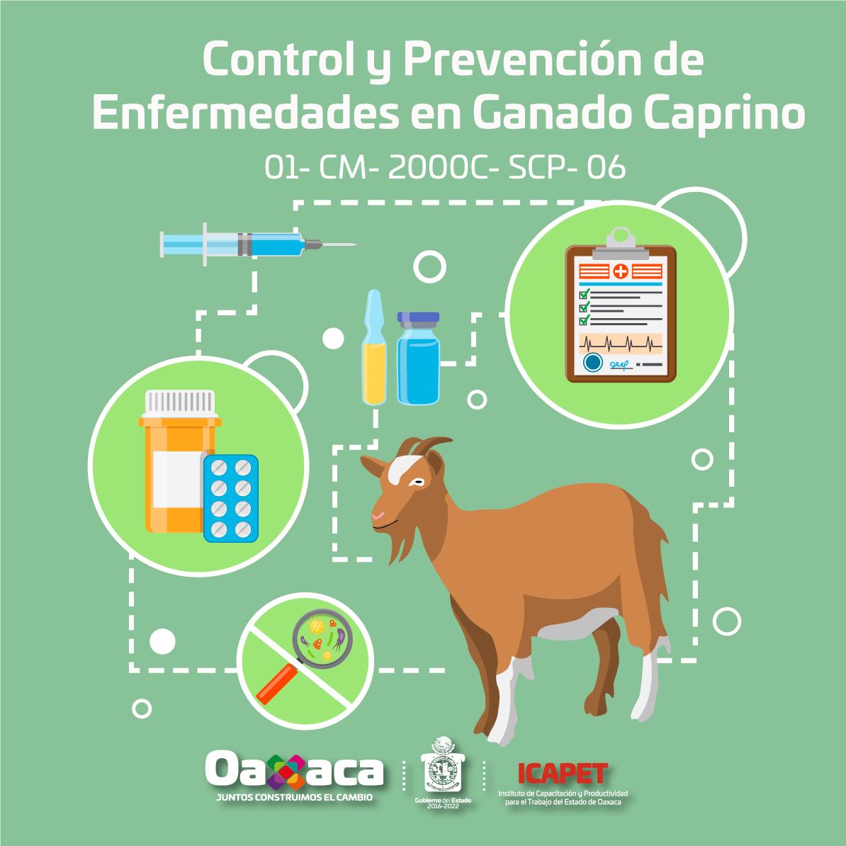 """""""Control y Prevencion de Enfermedades en Ganado Caprino"""""""