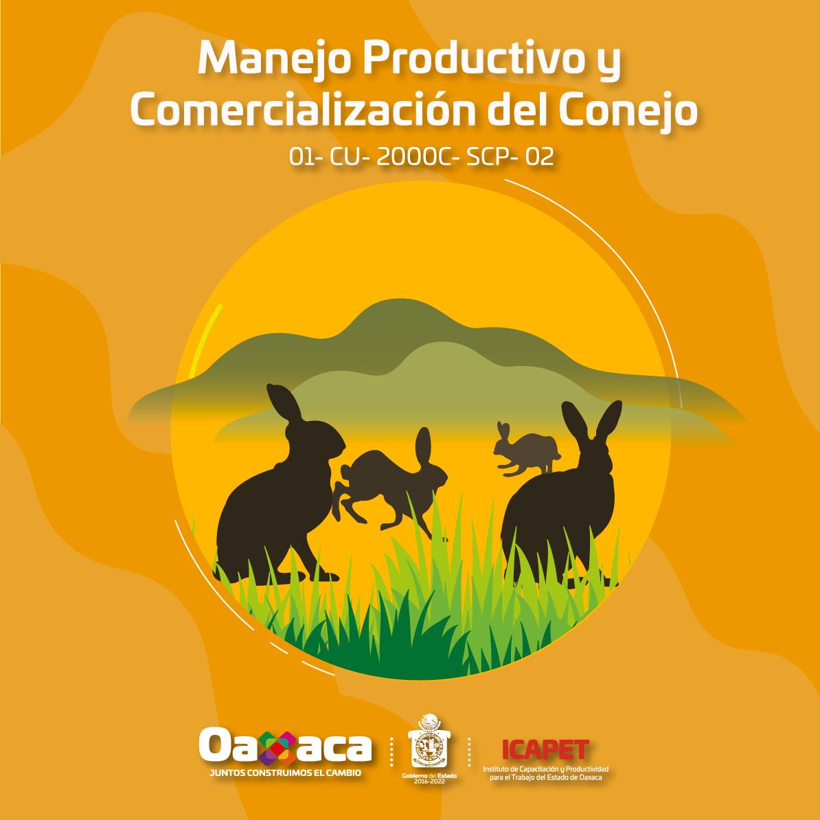 """""""Manejo Productivo y Comercialización del Conejo"""""""