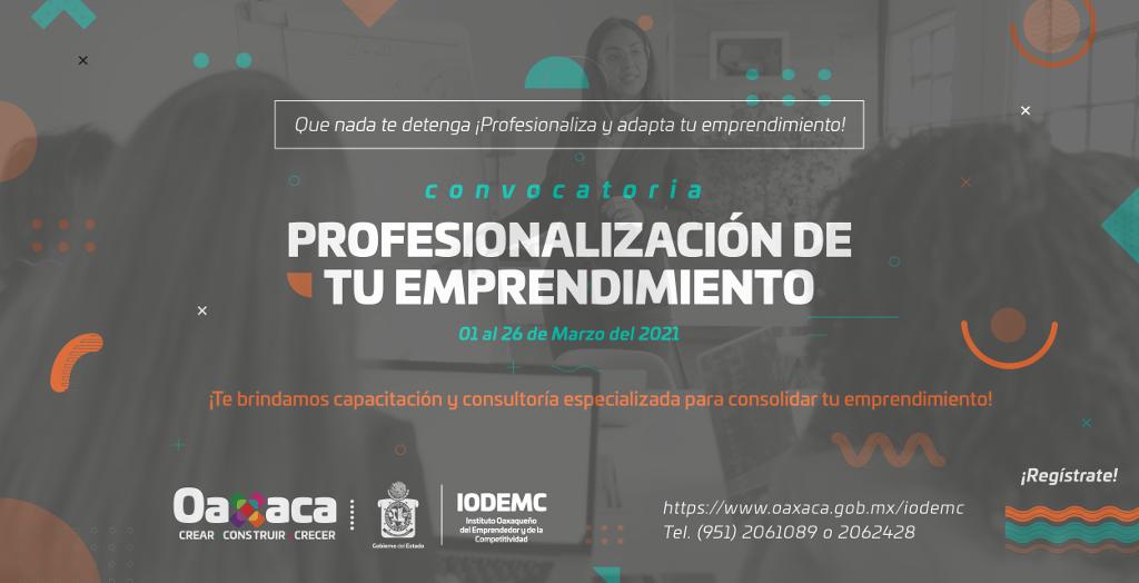Profesionalización  de tu emprendimiento