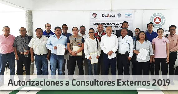 Consultores Externos 2019