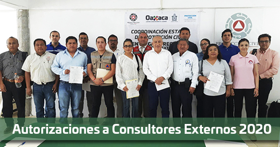 Consultores Externos 2020