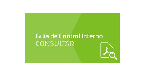 Guía de Control Interno