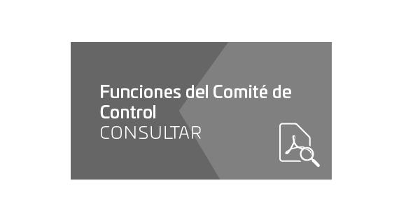 Funciones del Comité de Control