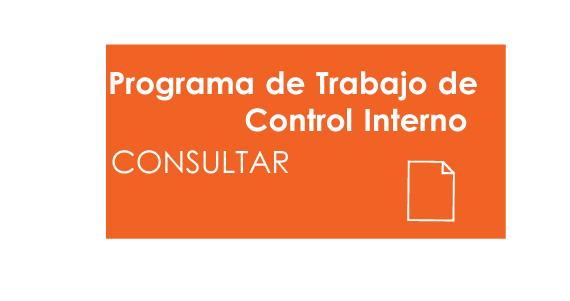 Programa de Trabajo de Control Interno