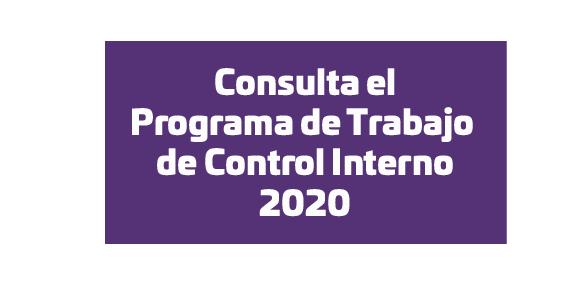 Programa de Trabajo de Control Interno 2020