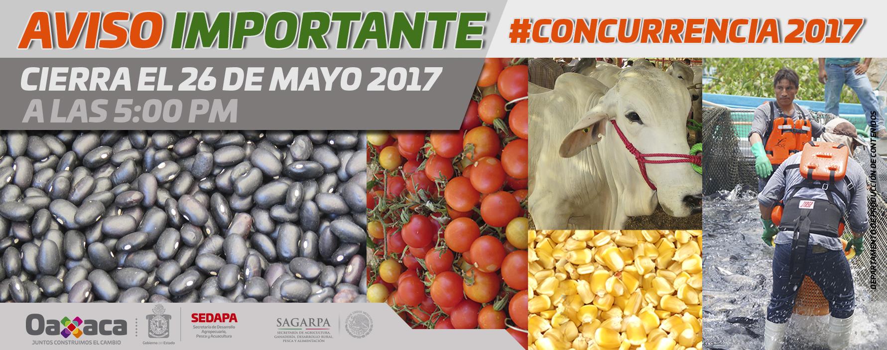 Convocatoria de concurrencia con las entidades federativas 2017
