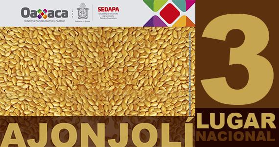 Oaxaca ocupa el tercer lugar nacional en producción de Ajonjolí