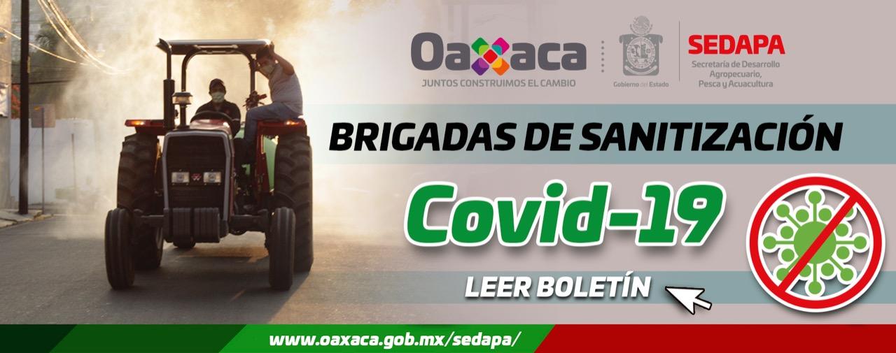 (COVID-19)