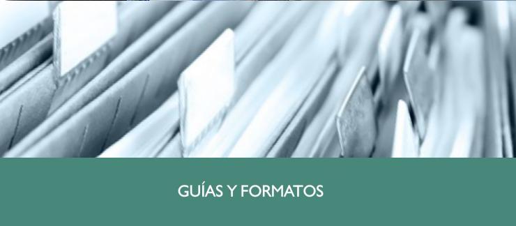 Guías y Formatos