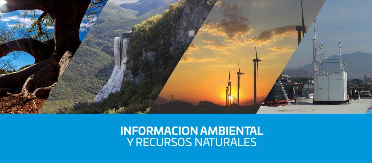 Información estatal ambiental y recursos naturales