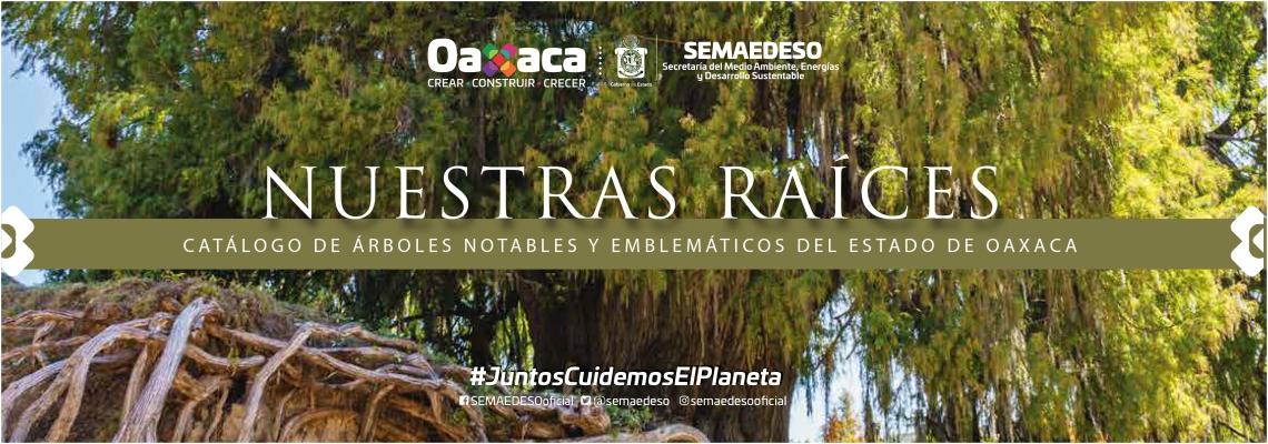 Catálogo de árboles notables y emblemáticos del estado de Oaxaca