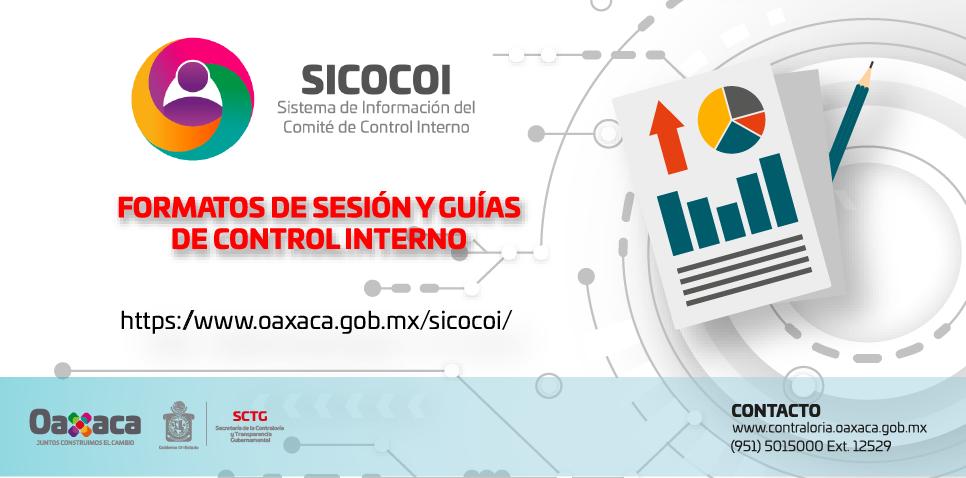 Formatos de Sesión y Guías de Control Interno