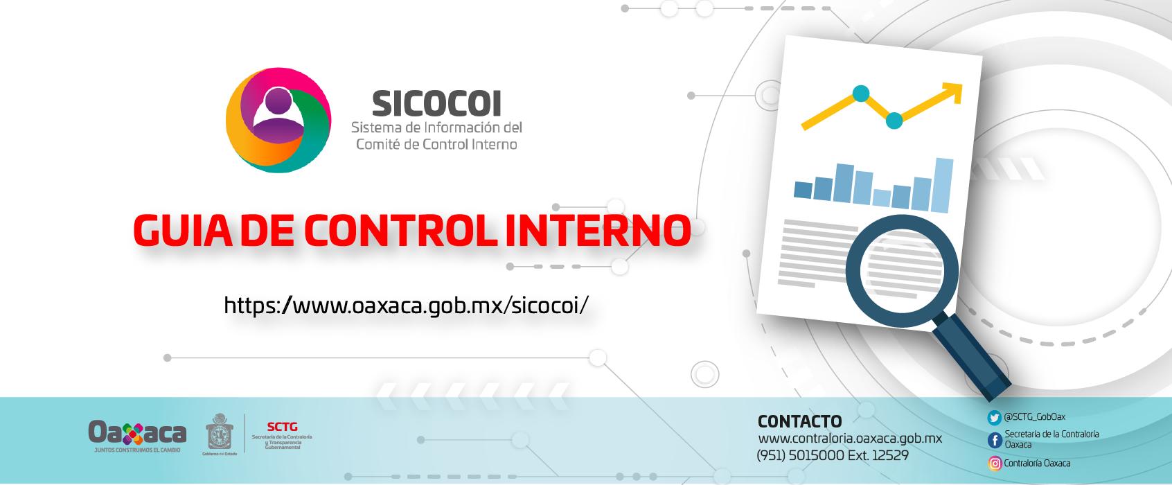 Guía de Control Interno 2019