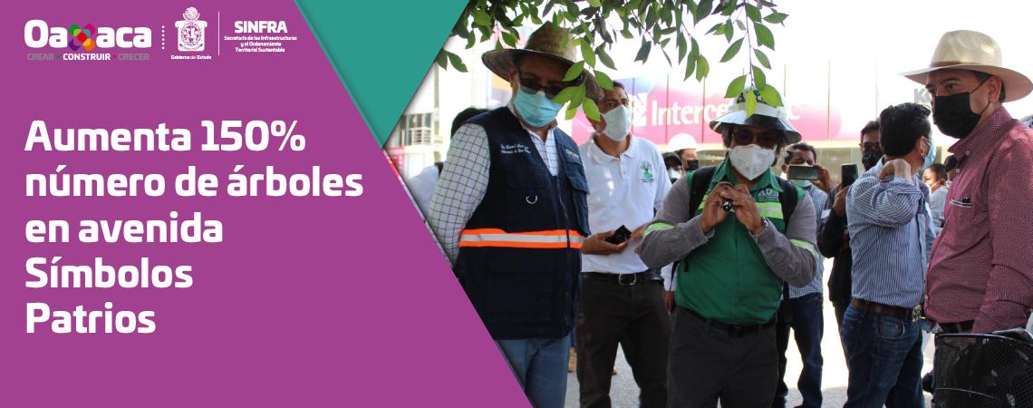 Aumenta 150% número de árboles en avenida Símbolos Patrios