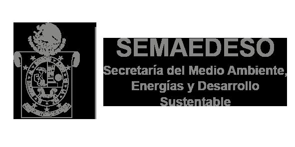 Secretaría del Medio Ambiente, Energías y Desarrollo Sustentable
